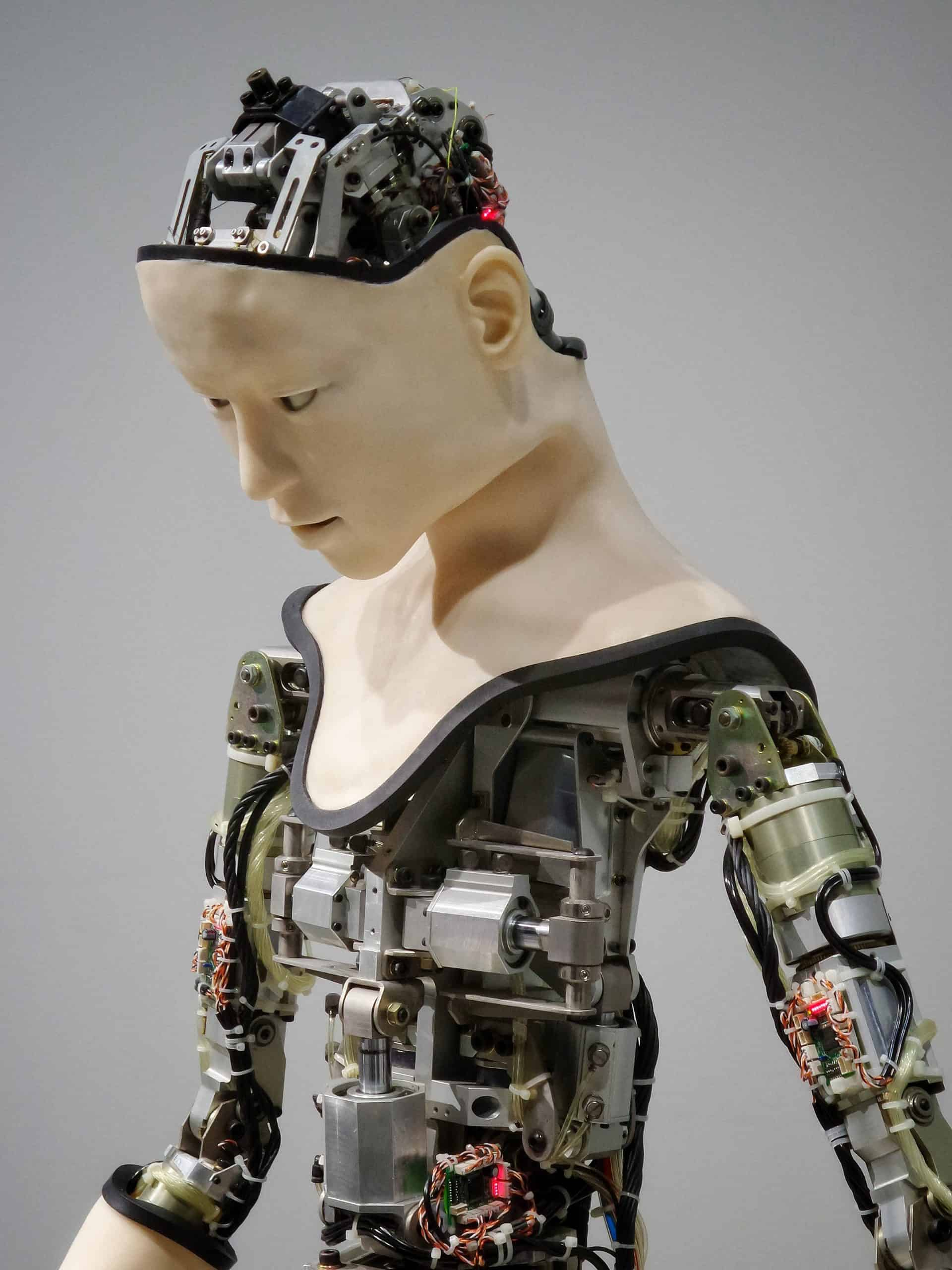 Top 3 Humanoid Robots Products You Need For Your Home
